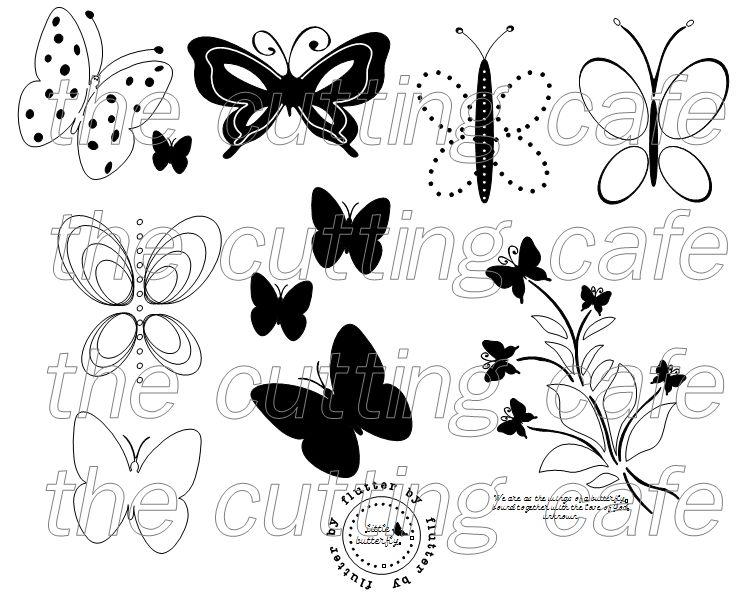 Social butterflies 1