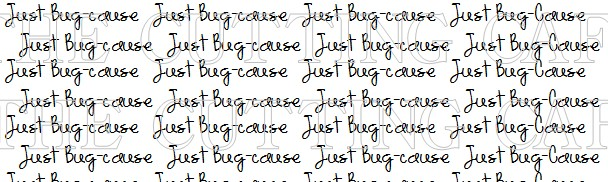 JUST BUGCAUSE