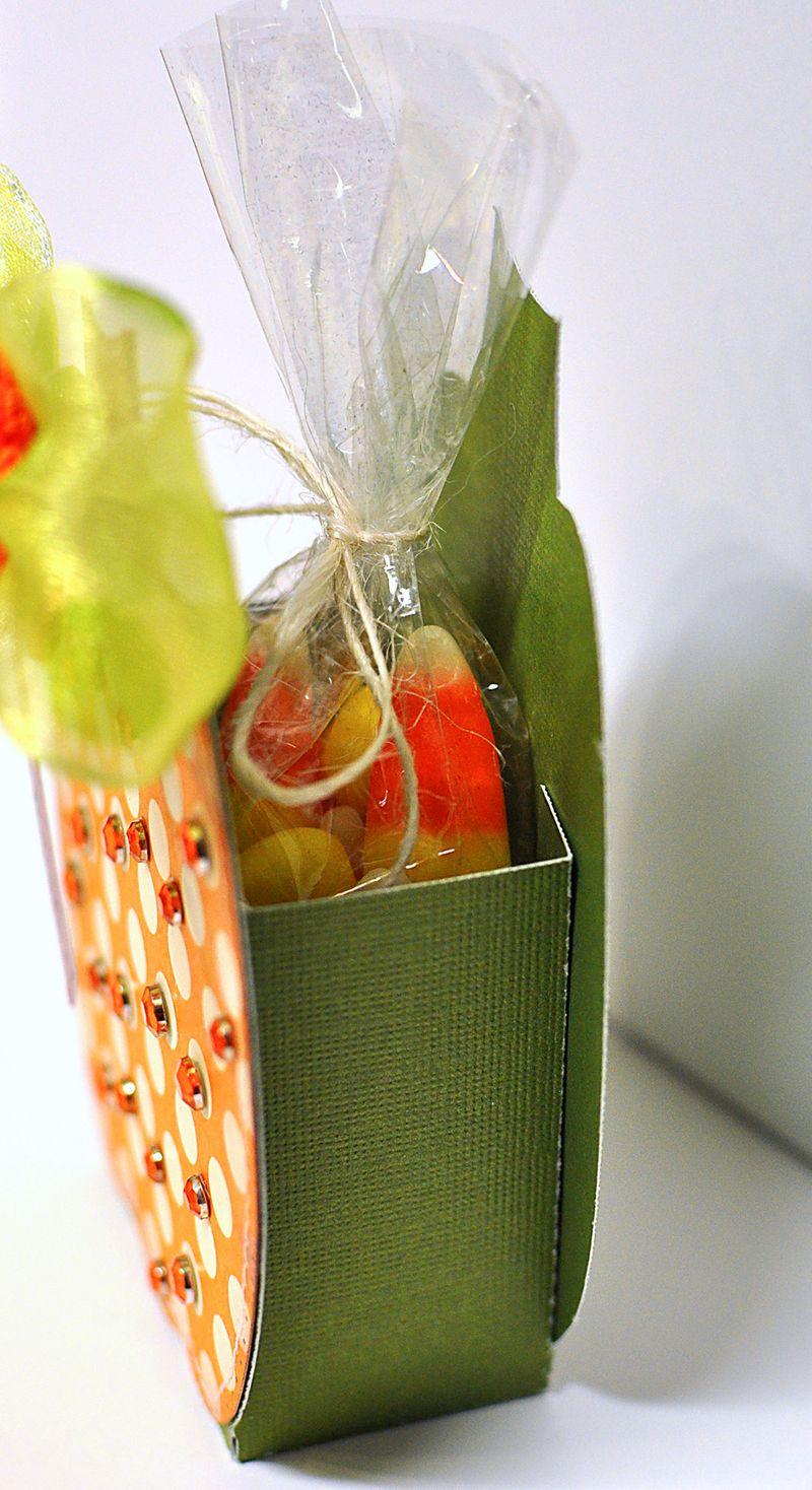 PUMPKIN TREAT BOX1