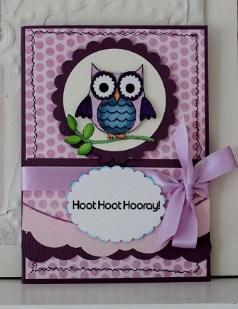 Hoot Hoot Hooray  Penny Shurberg - Fun with owls
