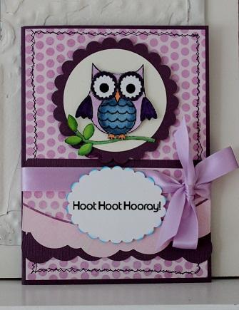 Hoot Hoot Hooray  Penny Shurberg - Fun with owls