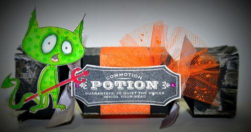 Potion  Leslie Foley - Cracker Treat box