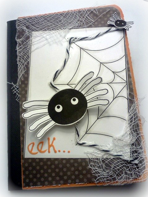 Eek Jovita Torres - Spiders and their webs