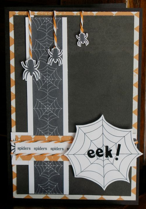 Eek  Kerys Sharrock - Spiders and their webs