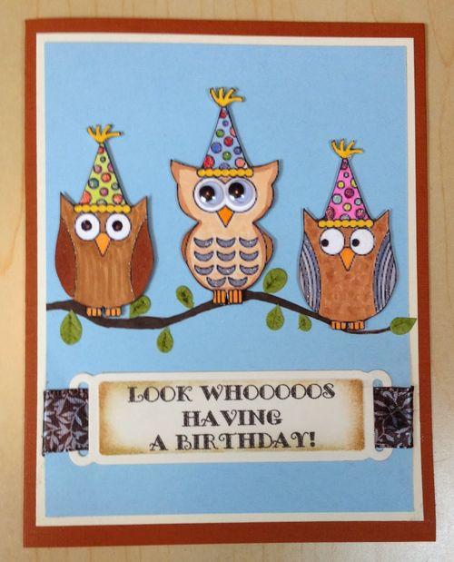LOOK WHOOOS - BARBARA BURGESS - FUN WITH OWLS