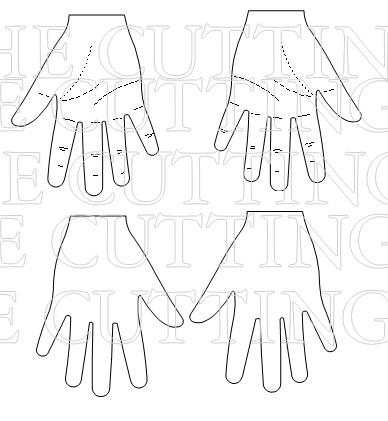 HANDDS