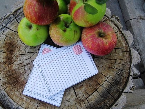 Mini note pad and card set - Debbie Fisher