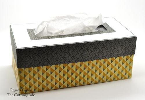 Tissue long