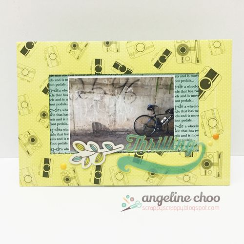 Bicycle Background set & Cameras Everywhere Background - Angeline choo