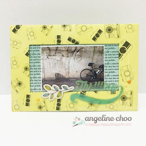 Bicycle Background set & Cameras Everywhere Background - Angeline choo
