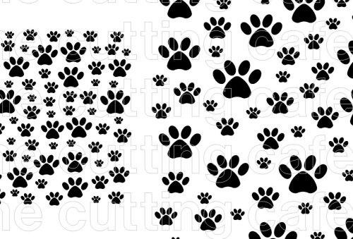 BLOG PAW background
