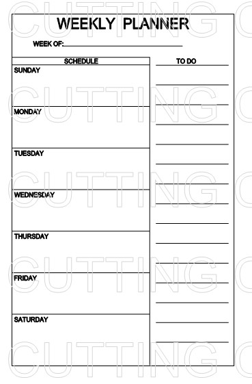 WEEKLY PLANNER NEW